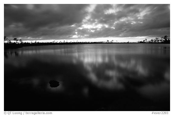 Stormy sunset at Pine Glades Lake. Everglades National Park (black and white)