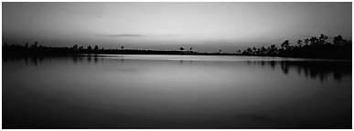 Lake with trees on horizon, dusk. Everglades National Park (Panoramic black and white)