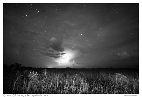 Sawgrass prairie with cloud lit by lightening. Everglades National Park (black and white)
