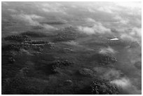 Aerial view of subtropical marsh, trees, and fog. Everglades National Park ( black and white)