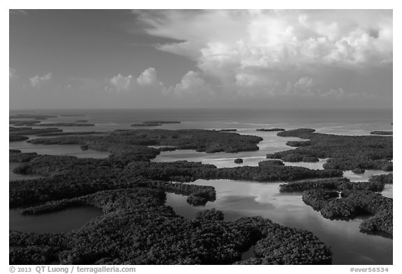 Aerial view of Ten Thousand Islands and Gulf of Mexico. Everglades National Park (black and white)