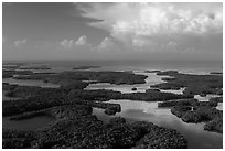 Aerial view of Ten Thousand Islands and Gulf of Mexico. Everglades National Park, Florida, USA. (black and white)