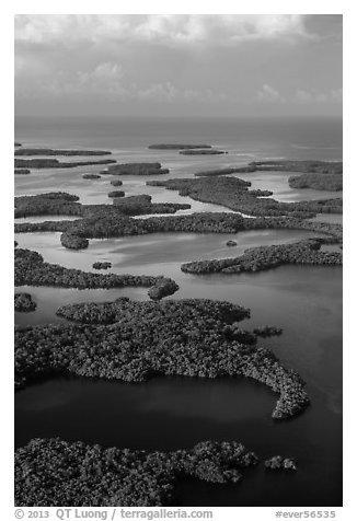 Aerial view of Ten Thousand Islands and coast. Everglades National Park (black and white)