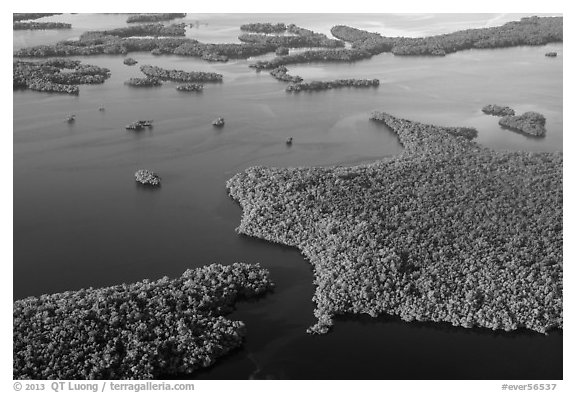 Aerial view of coastal mangrove islands. Everglades National Park (black and white)