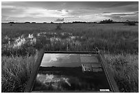 Interpretive sign, Shark River Slough. Everglades National Park ( black and white)