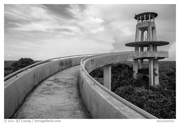 Shark Valley observation tower. Everglades National Park (black and white)