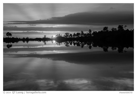 Sunset reflections, Pines Glades Lake. Everglades National Park (black and white)