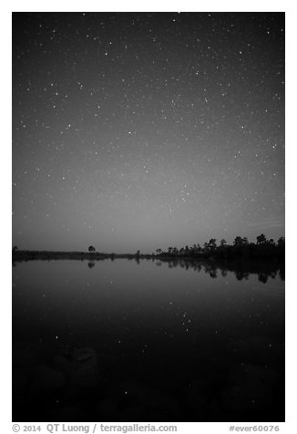 Starry night, Pines Glades Lake. Everglades National Park (black and white)