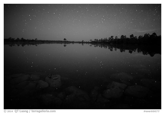 Stars and reflections in Pines Glades Lake. Everglades National Park (black and white)