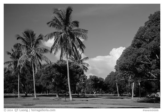 Flamingo Campground. Everglades National Park (black and white)