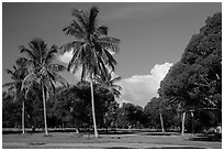 Flamingo Campground. Everglades National Park ( black and white)