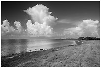 Coastal prairie, Florida Bay, and clouds. Everglades National Park ( black and white)