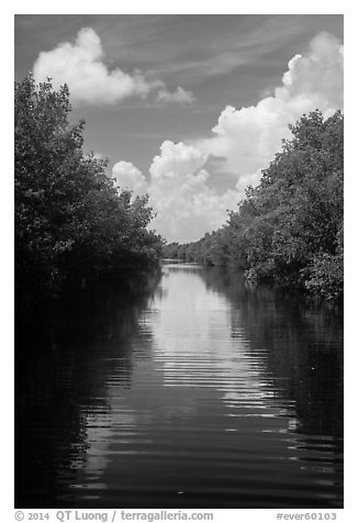 Canal, clouds, and reflections. Everglades National Park (black and white)