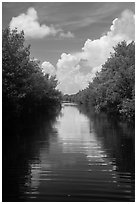 Canal, clouds, and reflections. Everglades National Park ( black and white)