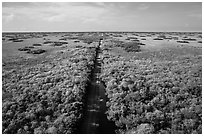 Aerial view of canal and road, Shark Valley. Everglades National Park ( black and white)