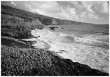 Coast at Kipahulu, morning. Haleakala National Park ( black and white)