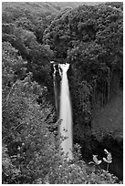 Makahiku Falls. Haleakala National Park ( black and white)
