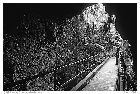 Thurston lava tube seen from inside. Hawaii Volcanoes National Park (black and white)