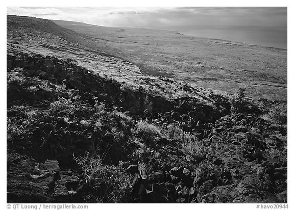 Black lava and  coastal plain from Hilana Pali. Hawaii Volcanoes National Park (black and white)