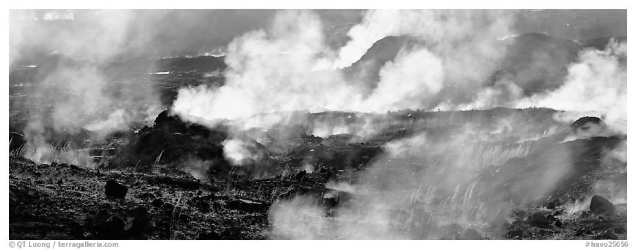 Fumeroles. Hawaii Volcanoes National Park (black and white)