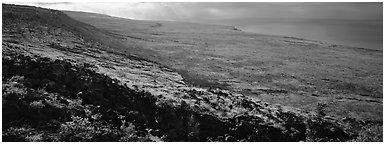 Volcanic landscape with lava rocks. Hawaii Volcanoes National Park (Panoramic black and white)