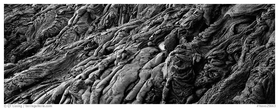 Detail of hardened lava flow. Hawaii Volcanoes National Park (black and white)