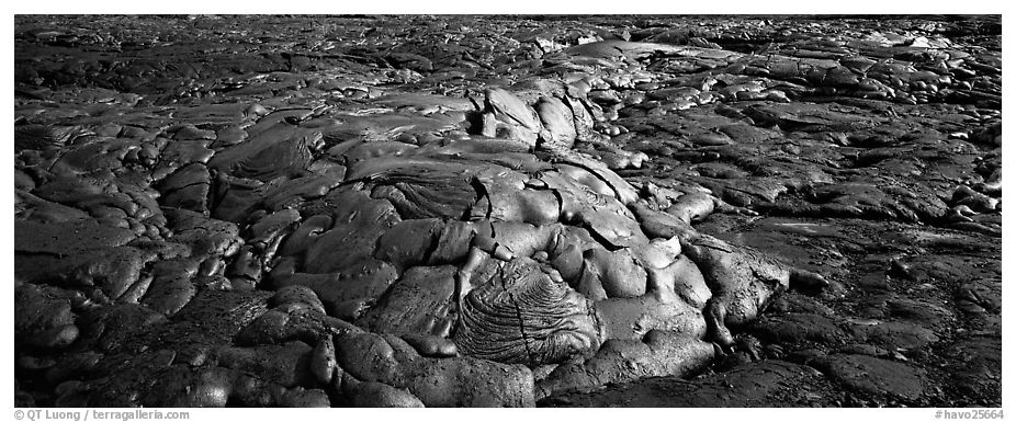 Recently hardened lava flow. Hawaii Volcanoes National Park (black and white)