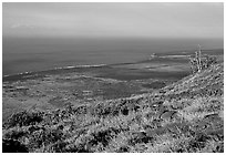 View of the coastal plain from Hilana Pali. Hawaii Volcanoes National Park ( black and white)