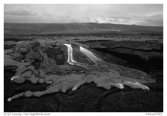 Molten lava flow at dawn on coastal plain. Hawaii Volcanoes National Park (black and white)