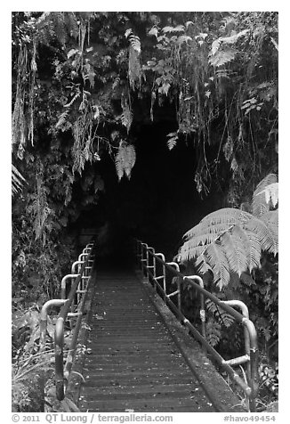Boardwalk and entrance of Thurston lava tube. Hawaii Volcanoes National Park (black and white)