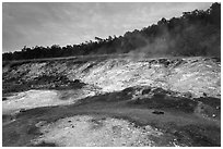 Sulphur deposits and vents (Haakulamanu). Hawaii Volcanoes National Park, Hawaii, USA. (black and white)