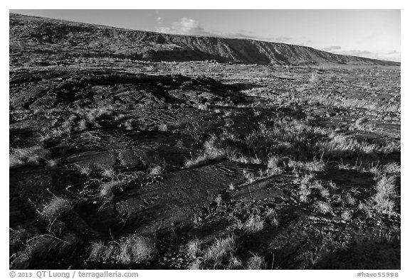 Puu Loa petroglyph field and pali. Hawaii Volcanoes National Park (black and white)