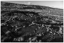 Puu Loa petroglyph field and pali. Hawaii Volcanoes National Park, Hawaii, USA. (black and white)