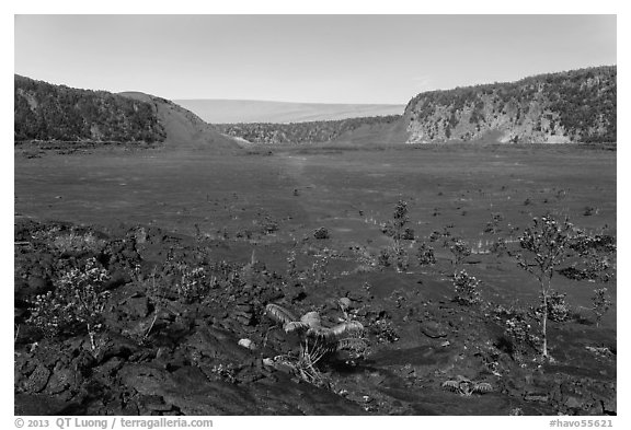 Kīlauea Iki crater floor. Hawaii Volcanoes National Park (black and white)