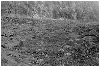 Kilauea Iki Crater floor and walls. Hawaii Volcanoes National Park ( black and white)