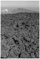 Field of rough aa lava on Mauna Loa summit and Puu Waawaa. Hawaii Volcanoes National Park ( black and white)