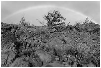 Srubs, lava, and rainbow, Kau desert. Hawaii Volcanoes National Park ( black and white)