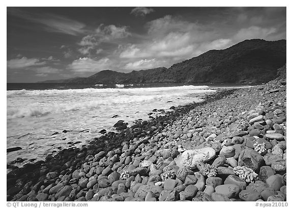 Beached coral heads and Vatia Bay, mid-day, Tutuila Island. National Park of American Samoa (black and white)
