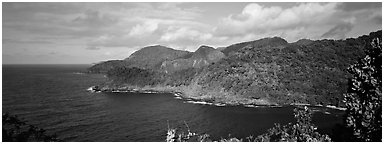 Verdant coasline with tropical vegetation, Tutuila Island. National Park of American Samoa (Panoramic black and white)