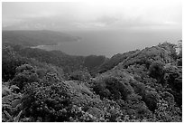 View from Mont Alava, Tutuila Island. National Park of American Samoa ( black and white)