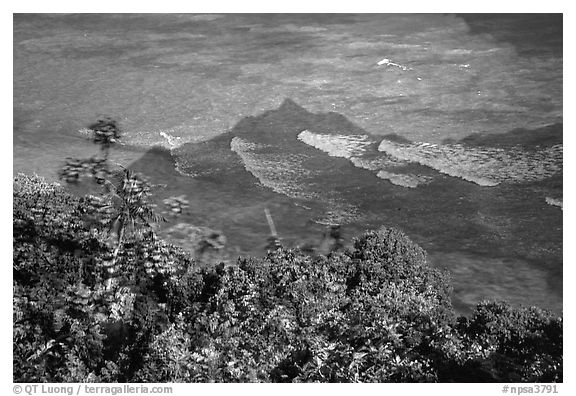 Tropical vegetation and turquoise waters in Vatia Bay, Tutuila Island. National Park of American Samoa (black and white)
