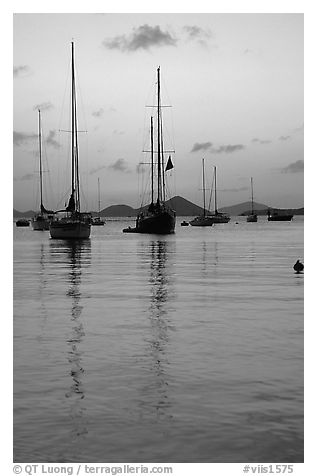 Sailboats in Cruz Bay harbor at sunset. Saint John, US Virgin Islands (black and white)