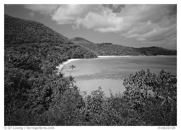 Hawksnest Bay. Virgin Islands National Park (black and white)