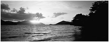 Sun rising across bay. Virgin Islands National Park (Panoramic black and white)