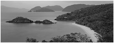 Tropical coast. Virgin Islands National Park (Panoramic black and white)