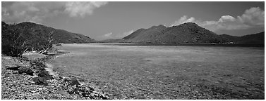 Bay and beach with turquoise waters. Virgin Islands National Park (Panoramic black and white)