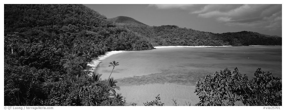 Tropical island scenery. Virgin Islands National Park (black and white)