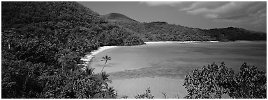 Tropical island scenery. Virgin Islands National Park (Panoramic black and white)