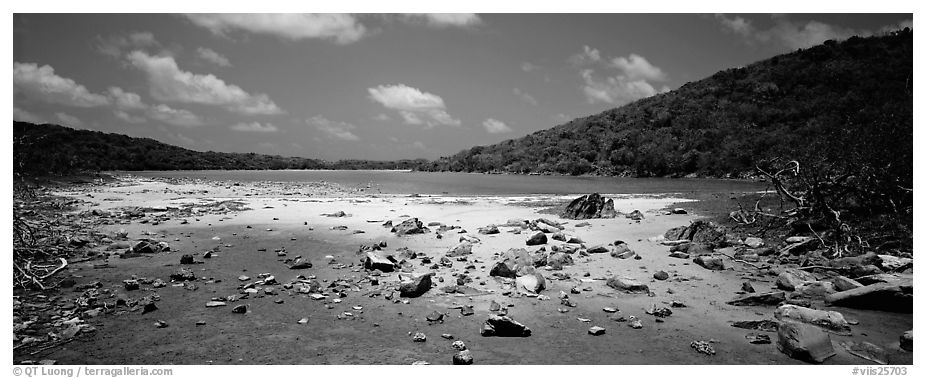 Pond with quicksand. Virgin Islands National Park (black and white)