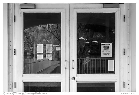 Palm trees, Visitor Center window reflexion. Virgin Islands National Park (black and white)